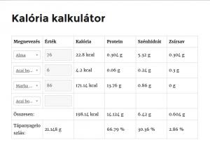 Kalória kalkulátor táblázata működés közben